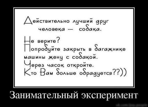 http://cs14106.vk.me/c540105/v540105521/bfee/-ynBjJ682RY.jpg