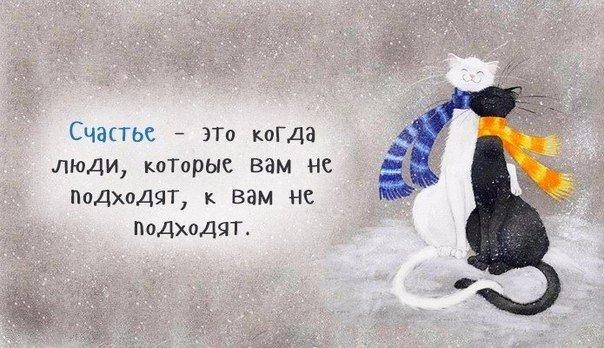 https://cs7050.vk.me/c540105/v540105524/2715b/pIj-AjHy520.jpg
