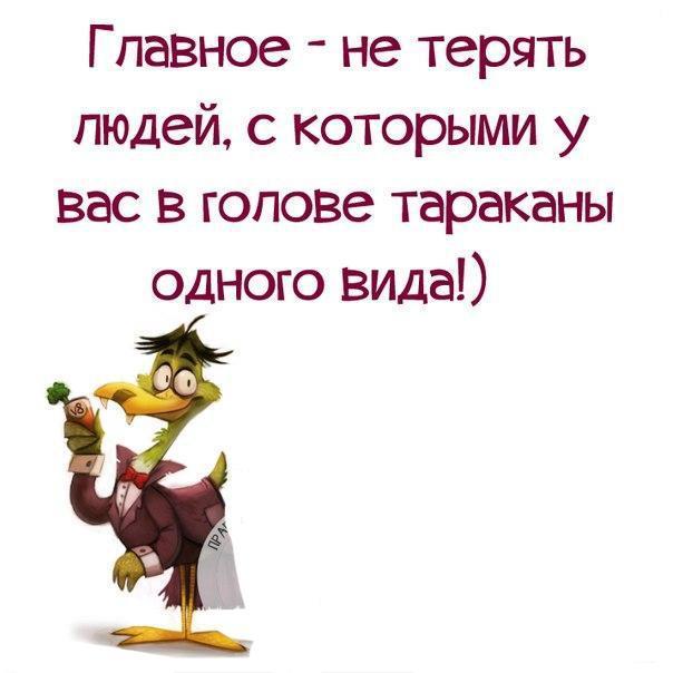 https://cs7050.vk.me/c540105/v540105567/31c44/pyqtYuQ6cag.jpg