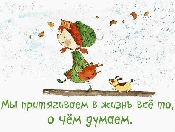 https://cs7054.vk.me/c540105/v540105567/3ce26/aQ8ULFehCfQ.jpg