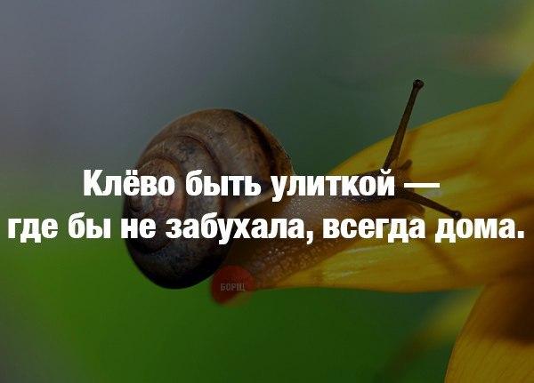 y-eOnFQNhIk.jpg
