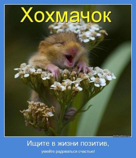 Всяко - разно 61 )))