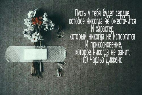 Фото №456239127 со страницы Мамета Чабанова