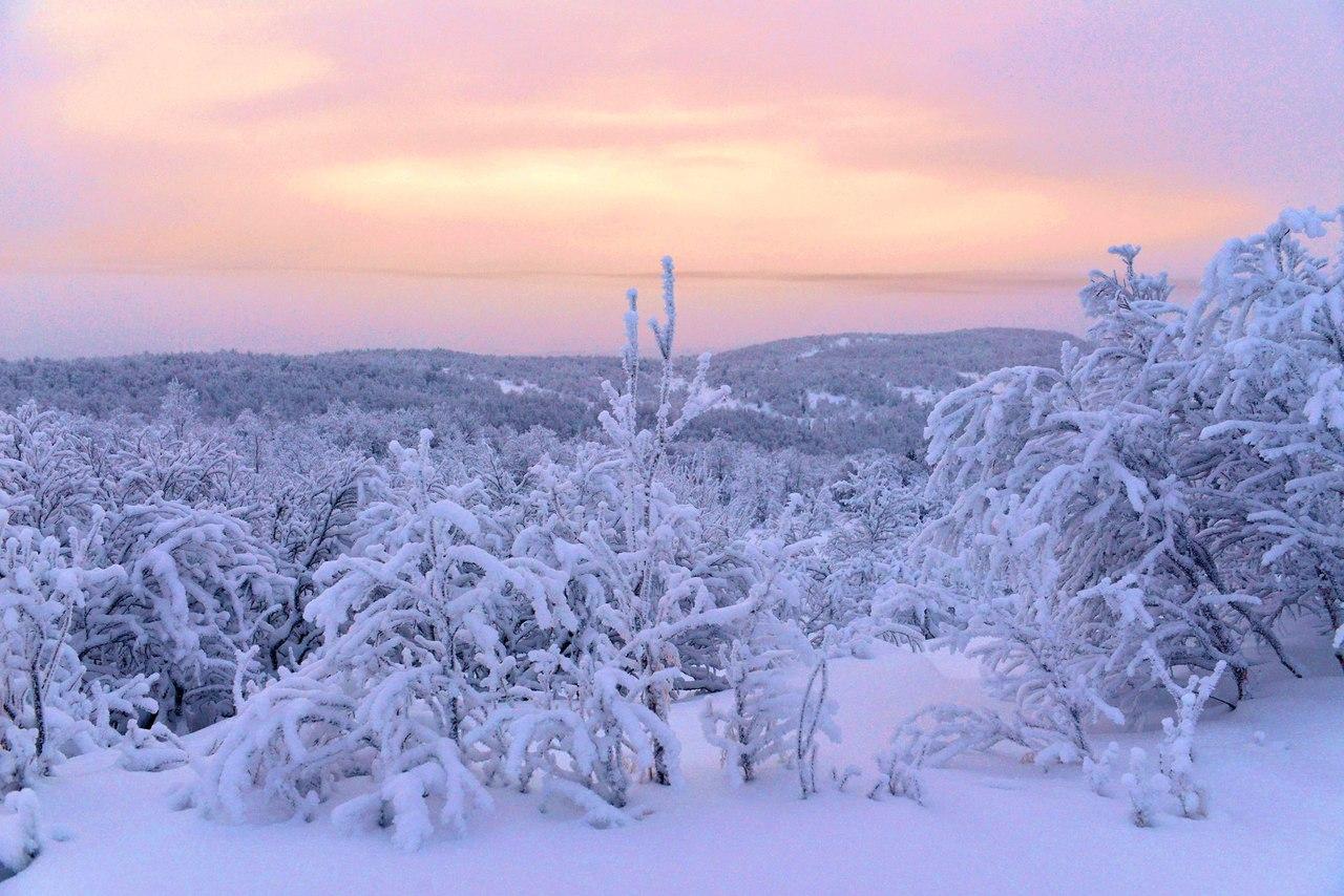 first dawn 2016 murmansk