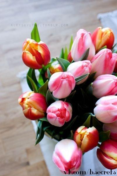 Мужчины, в любой непонятной ситуации дарите девушкам цветы!