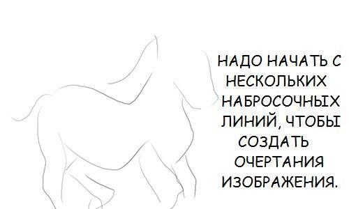 http://cs7062.vk.me/c540105/v540105757/32f7c/bw5yClp_YD8.jpg