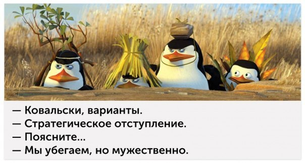 https://cs7051.vk.me/c540105/v540105757/69574/HtQpTJFQIOw.jpg