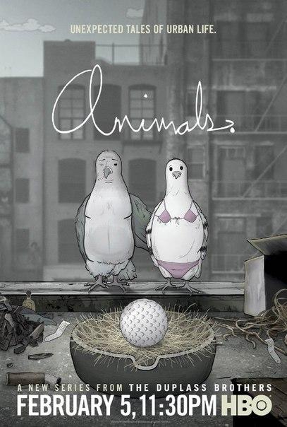 Животные 1-2 сезон 1-10 серия AMEDIA | Animals