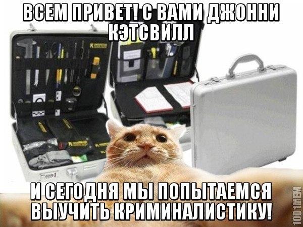 http://cs14113.vk.me/c540105/v540105892/1ae42/yCiErxDItL8.jpg