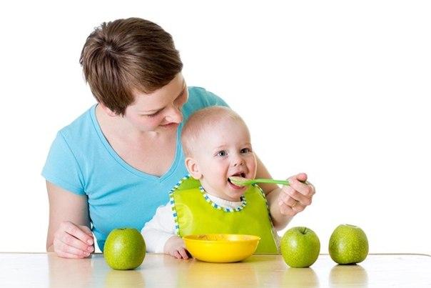 Что делать, если малыш не хочет пробовать новую для себя еду?