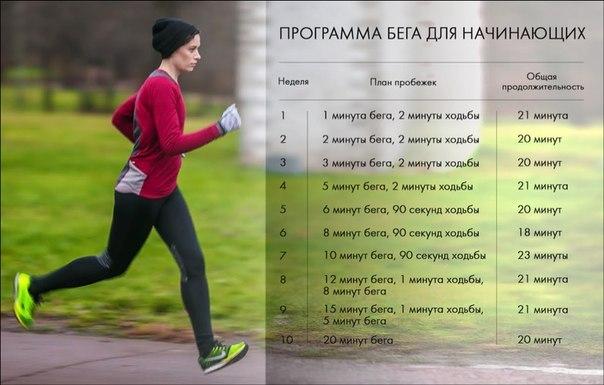 программа тренировок для снижения веса buvohile