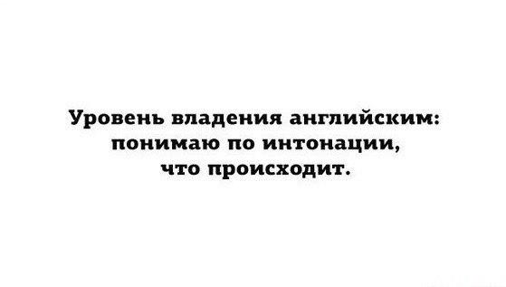 https://cs7058.vk.me/c540105/v540105988/3c639/iAH3kGhhx9U.jpg