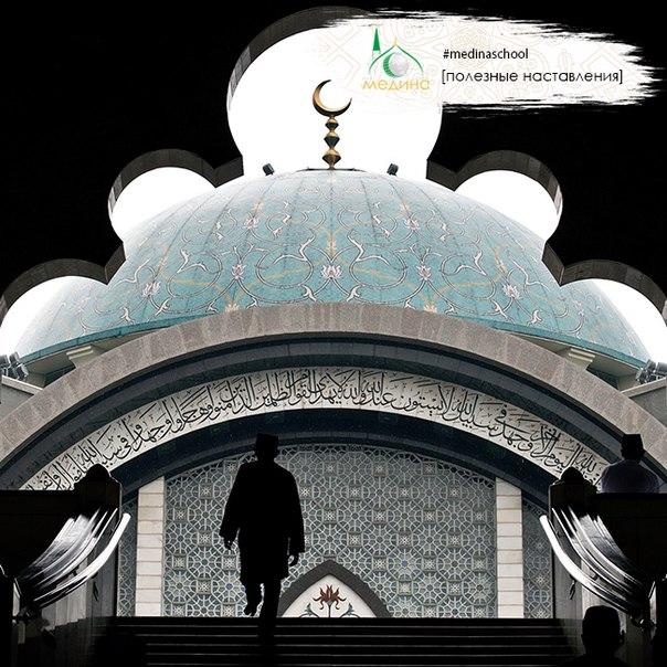 Имам Малик (да помилует его Аллах) сказал: