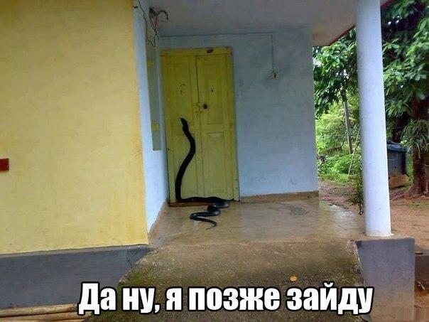GHYdweEC3_w.jpg