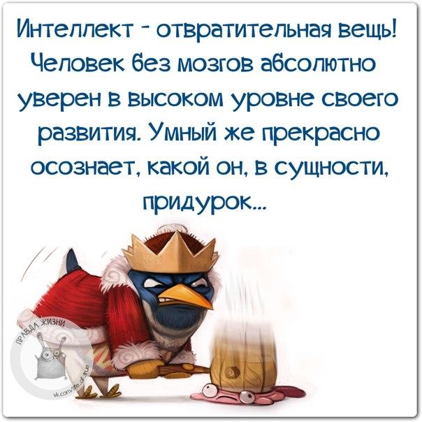 https://pp.vk.me/c540106/v540106123/39ca0/bo1Z3zXsQTc.jpg