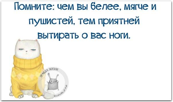 http://cs14111.vk.me/c540106/v540106123/3b37f/ds46DD7Q8J8.jpg
