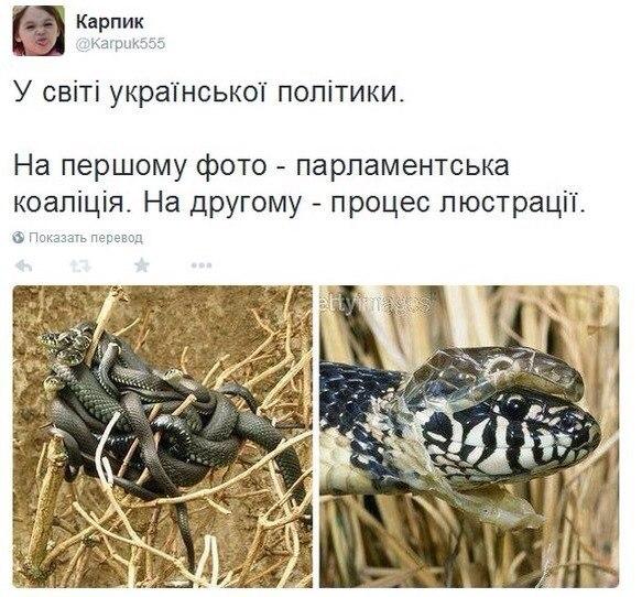 Никакого политического давления со стороны Кононенко на меня не осуществлялось, - Демчишин - Цензор.НЕТ 9247