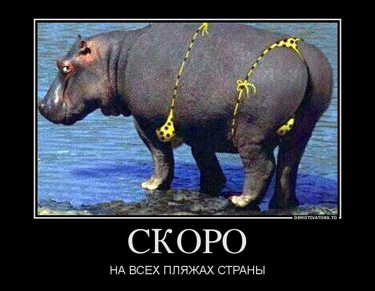 Эту гадину ходит наша бабушка палочкой стуча тебя, Суворов