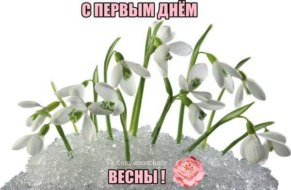 KBj_xZ7TH8w.jpg