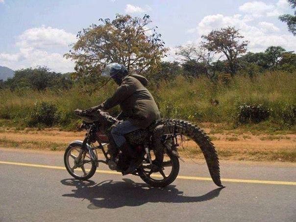 Суровая Танзания :)