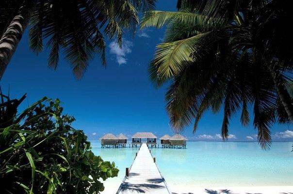 10 фактов о Мальдивских островах
