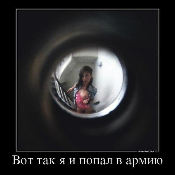http://cs7051.vk.me/c540106/v540106364/19c1e/N6HbV187L0k.jpg