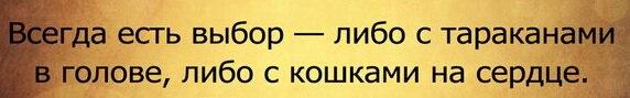 http://cs7054.vk.me/c540106/v540106469/295dc/dw4cXP6Bjlw.jpg