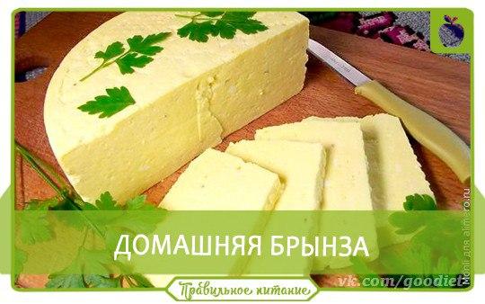 Сыр брынза польза и вред