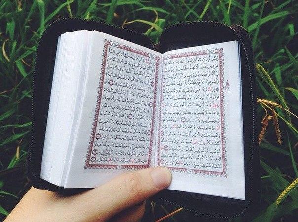 «Кто вышел из дома за знаниями, тому Аллах облегчает путь в Рай»