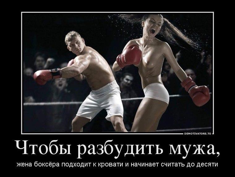 Спутник расписание из москвы в пушкино буду