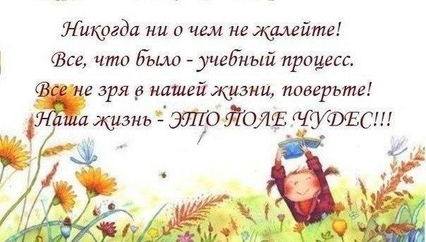 http://cs14114.vk.me/c540106/v540106521/22e8/Ed4-OjnbrQQ.jpg