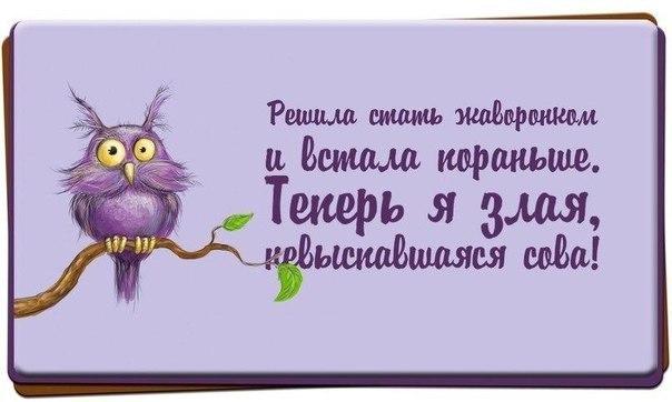 http://cs14114.vk.me/c540106/v540106521/24db/tQMNSKTvd5M.jpg