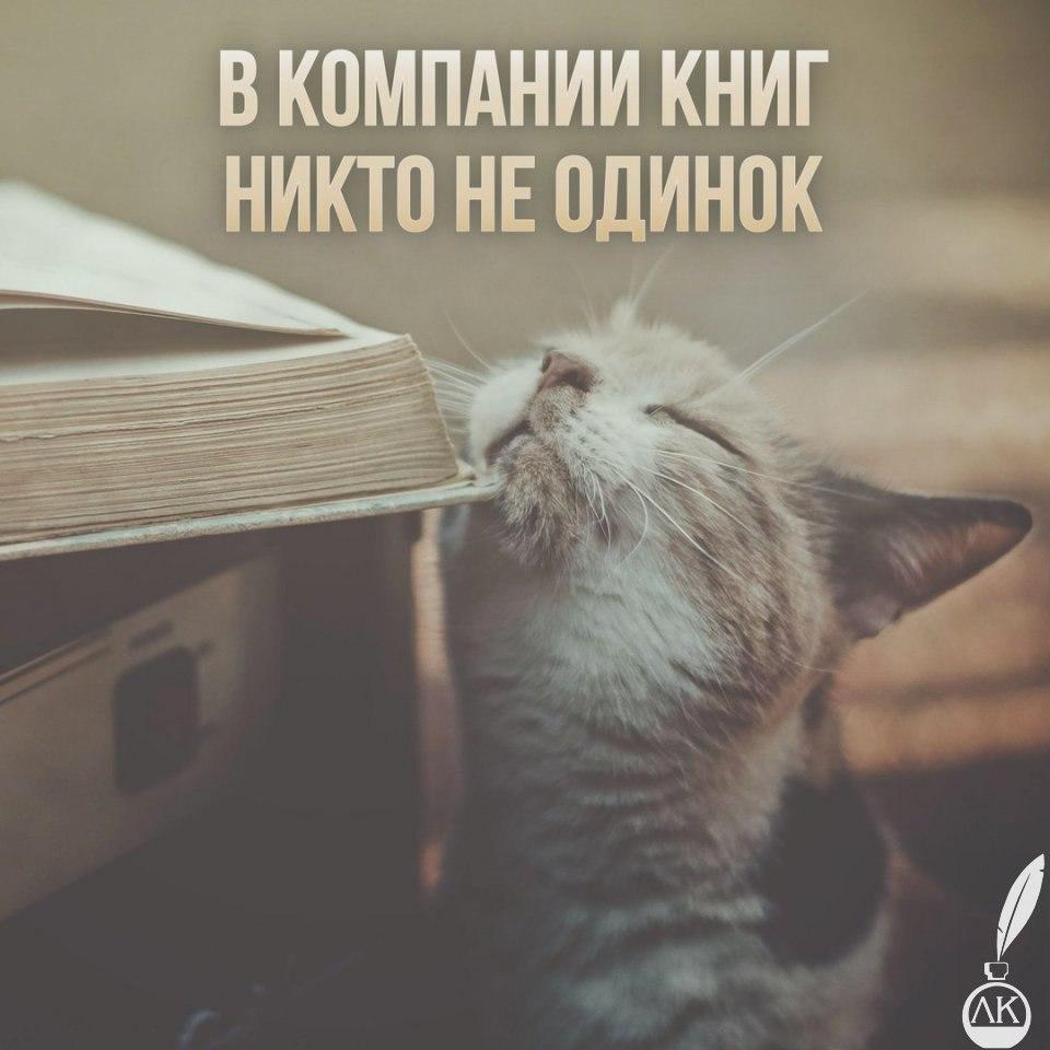 https://cs7050.vk.me/c540106/v540106589/303ba/drkIgwLwnx0.jpg
