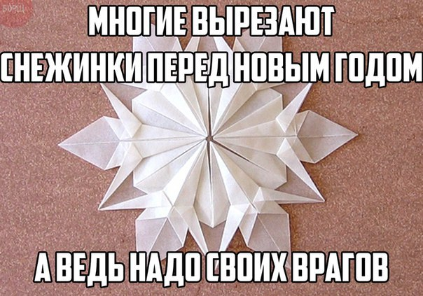 https://cs7063.vk.me/c540106/v540106596/35a89/6SecZ-NERrE.jpg