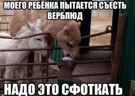 3Dxaos_K8V0.jpg