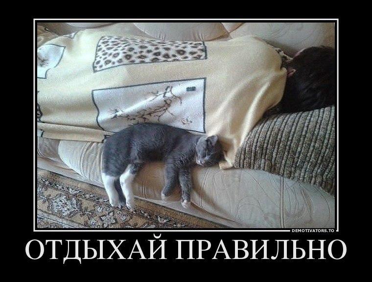 Хоста краснодарский край фото устроило Фишера