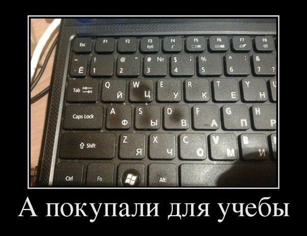 https://cs7053.vk.me/c540106/v540106662/2af3b/vpFXE4wKdqU.jpg