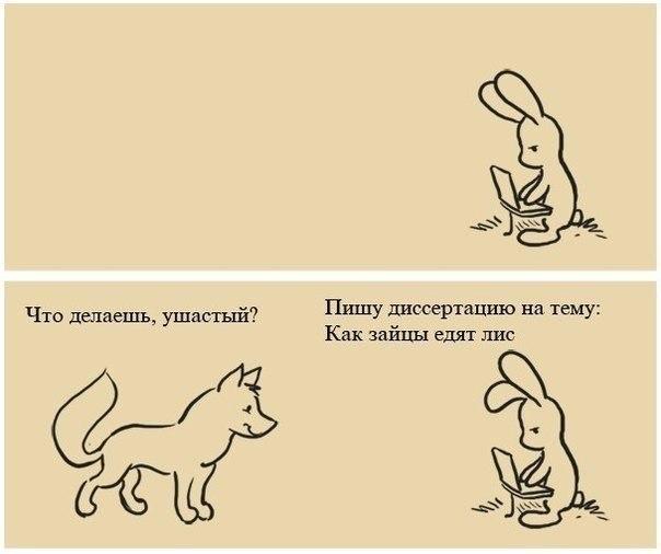 Диссертация как зайцы едят лис Страна анекдотов Диссертация как зайцы едят лис