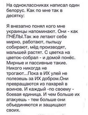 По факту обстрела маршрутки во Львове возбуждено уголовное дело, - МВД - Цензор.НЕТ 5675