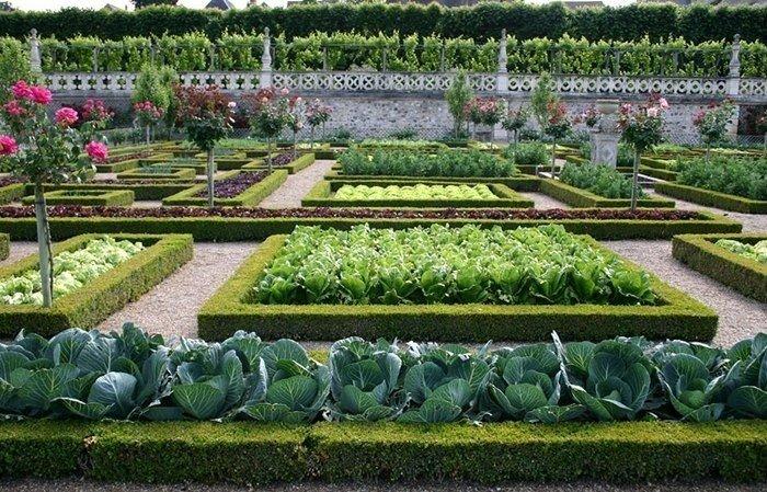 Французский огород своими руками фото