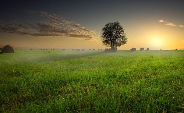 Закат в Тверской области. Автор фото — Антон Шваин
