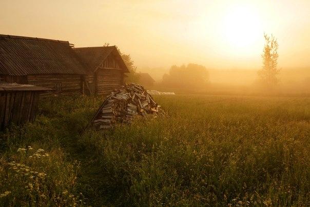 Утро в деревне Церковище, Псковская область. Автор фото — Пётр Косых
