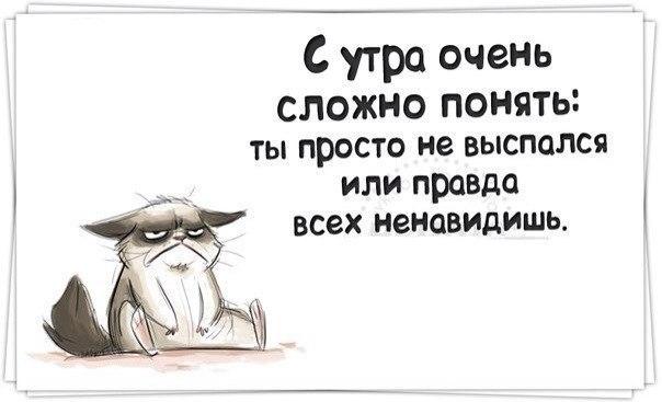 http://cs7063.vk.me/c540106/v540106858/3cb60/VDiegXCKG44.jpg