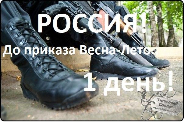 http://cs14110.vk.me/c540106/v540106875/2350f/4bL1bihbCiY.jpg