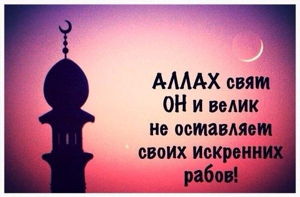 Милосердию Аллаhа нет предела...