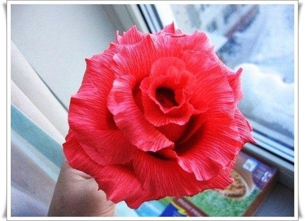 Роза из гофрированной бумаги (8 фото)