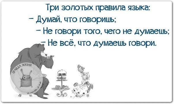 https://cs7065.vk.me/c540107/v540107123/20138/anDiXqAMl0g.jpg
