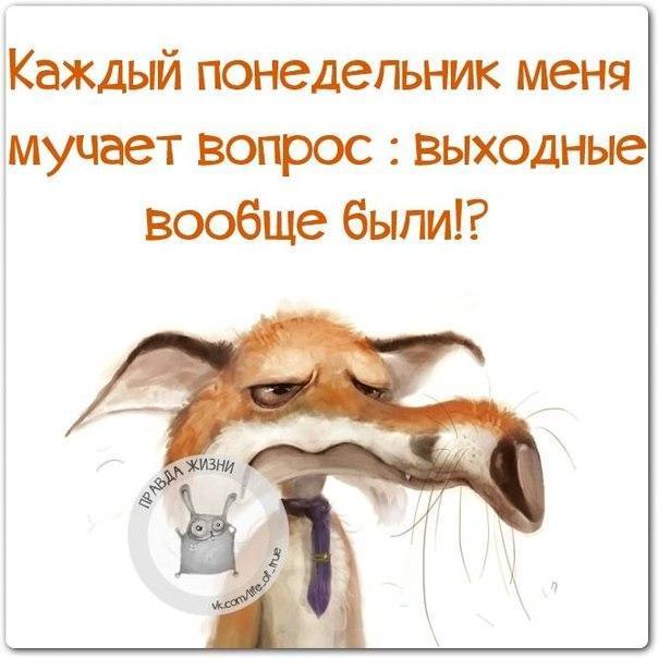 https://cs7058.vk.me/c540107/v540107123/21e1c/ufh5V_8Lmyg.jpg