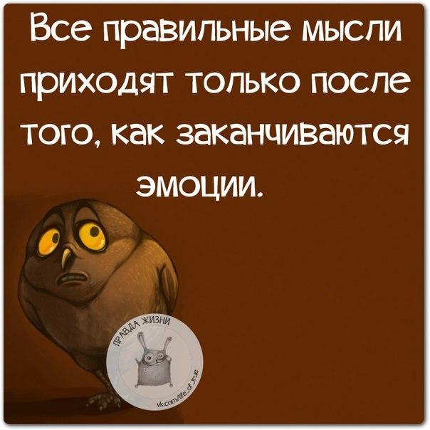 https://cs7066.vk.me/c540107/v540107123/22695/aWgy05rkYvY.jpg