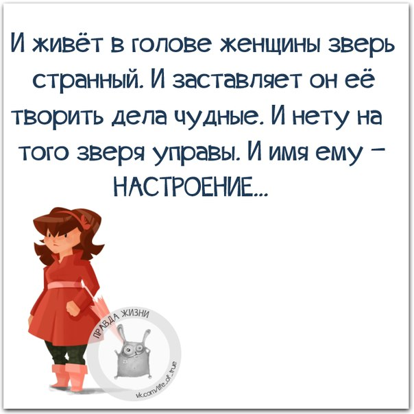 http://cs540100.vk.me/c540107/v540107123/24ee6/Q96iJzadmgE.jpg